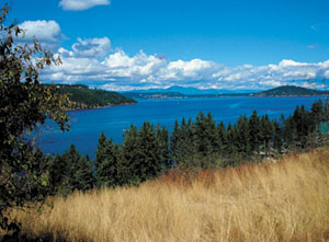 Lake Coeur d Alene